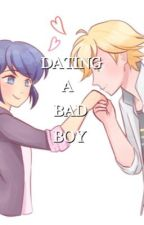 Dating a bad boy || miraculous ladybug by chatrawr