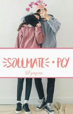 SOULMATE•pcy  by pyongrieee