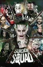 Suicide Squad-Fakta by Martina852