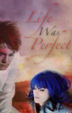 Life Was Perfect (A Gerard Way Fan Fiction) by DontPanicPanicPa