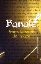 Banale : Sans laisser de trace.  by jesuisecrivain