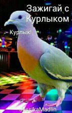 Зажигаем с Курлыком by JassikaMadlinka