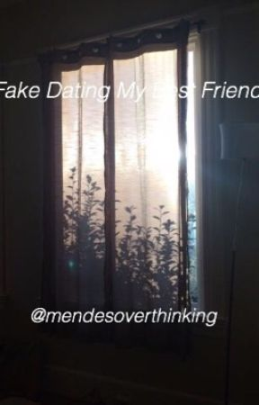 Fake Dating My Best Friend // Shawn Mendes by mendesoverthinking