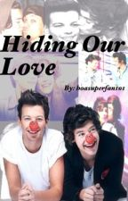 Hiding Our Love (Larry Stylinson) by hoasuperfan101