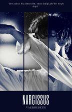 Narcissus // Sekai by valeriebeth