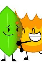 Burning Passion - A BFDI Fanfiction (Firey X Leafy) by TheYSFandom