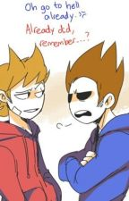 Tord x Tom |Fanfic| by oOShade-StarOo