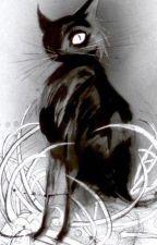 El gato negro de Edgar Allan Poe [TERMINADA] by Melchu_Garcia