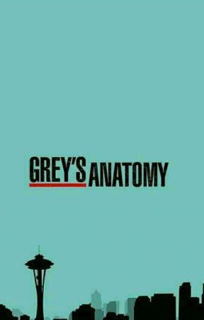 Grey s anatomy 5x8 online dating