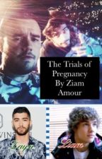 The Trials of Pregnancy by ZiamAmour