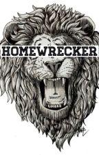 homewrecker || l.s by awnjones
