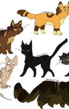 Canon Warrior Cat RP  by Jayfeather4evers