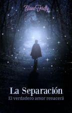 La Separación by ElaineFirefly