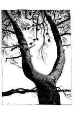 macabre.  by hewllett
