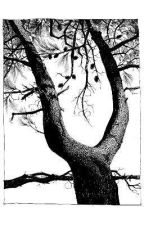 macabre ~ tyler joseph x reader #2 *ON HOLD* by donjuseph