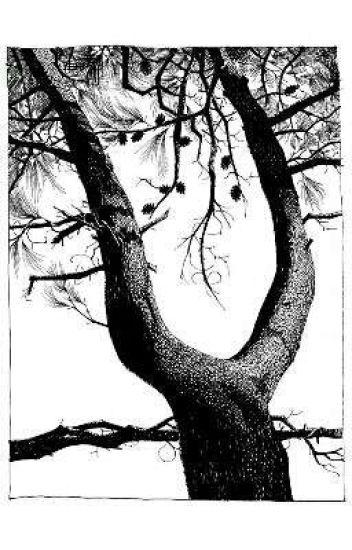 macabre. -t.j x reader- #2