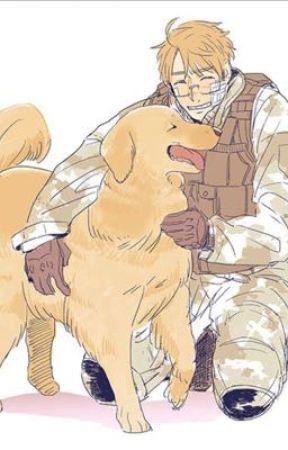 Dog! Hetalia x Reader  by ravenpawwarriors