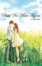 Until We Meet Again by SushiOnigiri