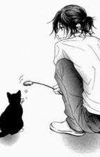 [Short][Jikook/Kookmin] Mèo, ánh mắt, hoa anh đào và sự dễ thương by Kuga91