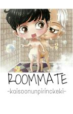 Roommate(KaiSoo-KaDi Texting) by kaisoonunpirinckeki
