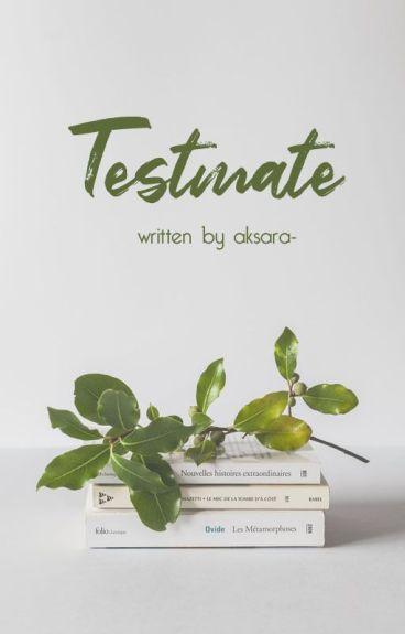 Testmate [10/10 END]