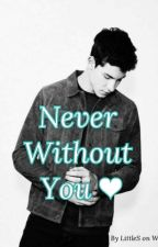 Never Without You ❤ Tome 2 (Shawn Mendes) by LittleS24