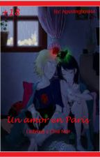 Un Amor en París...+18 (Ladybug y Chat Noir) by agustinghost44