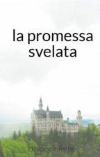 la promessa svelata by cicapisciniente