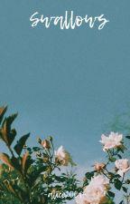 SWALLOWS  ☽ChanBaek☾ by -alice2001-