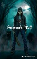 Sharpeur's Wolf  by AluxmVnox