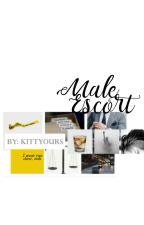 Male Escortஜ hiatus by kittyours