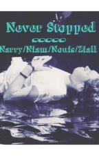 Never Stopped - Narry/Niam/Nouis/Ziall  by ShipObsessed39