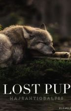 Lost Pup by hajrahtiqbal786