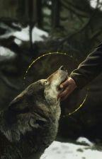 Blackfoot 2: Bloodline by Kitchenator