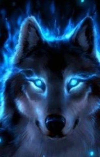 I'm a rare blue wolf
