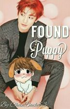 Found Puppy (Chanbaek Oneshot) by ChanBaek83
