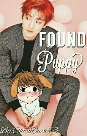 Found Puppy (Chanbaek Oneshot) by ChanBaek83