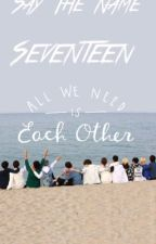 Sweet, Complex, Seventeen (seventeen x reader) by the8corgi