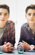 Caught My Eye (A Harries twins Fan Fiction) by uncertainstyles