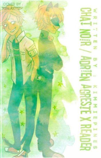 『Adrien Agreste/ Chat Noir x Reader Oneshots!』