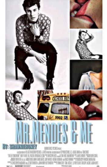 Mr. Mendes & Me (Re-writing)