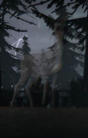 Angel by foalish