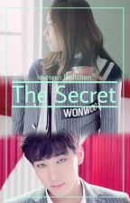 The Secret [svt Wonwoo lvlz JIN] ✔ by sebonglijeu