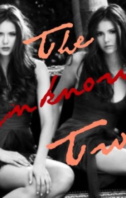The Unknown Twin- Vampire Diaries Fan Fiction by ellen13