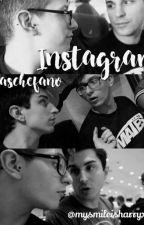 Instagram; Saschefano by Mysmileisharryx