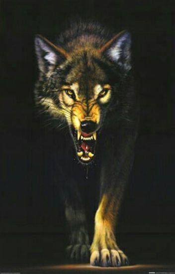 Big Bad Wolf (Naruto Fanfic)