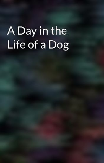 A Day in the Life of a Dog - midnightposter - Wattpad