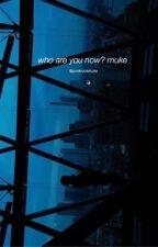 who are you now? muke by pvnkrockmuke