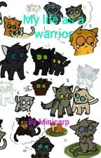 Life as a warrior by Minicarp