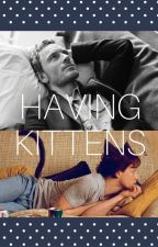 Having Kittens   // Cherik by EmiJey